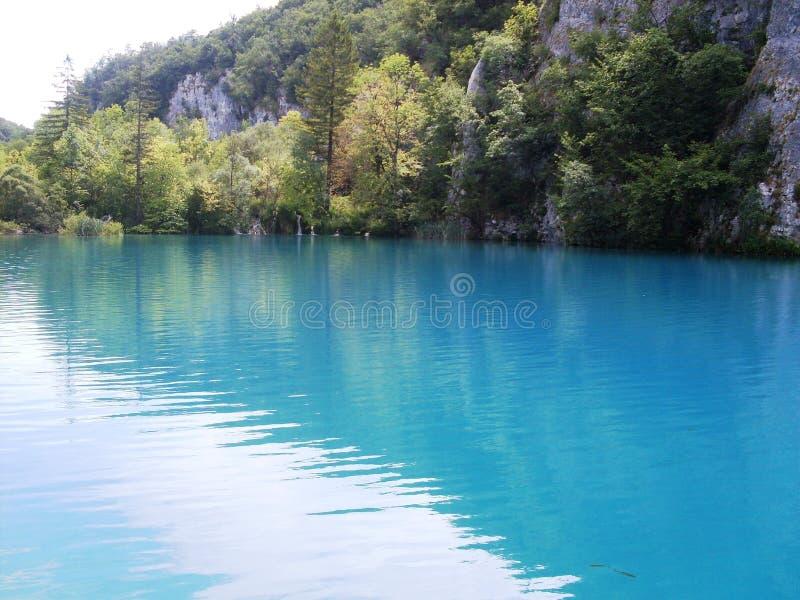 Paisagem colorida e vibrante da costa do lago Paisagem tranquilo útil como o fundo Abaixe a garganta dos lagos Lagos Plitvice nac fotografia de stock