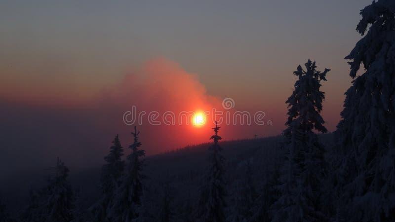 Paisagem colorida no nascer do sol do inverno na floresta da montanha fotografia de stock royalty free