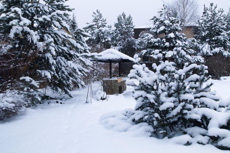 Paisagem com área do assado, snowbanks da neve branca, pinheiros no jardim do país fotos de stock
