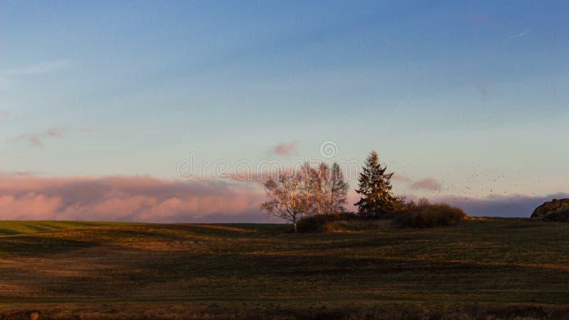 Paisagem com as nuvens coloridas do nascer do sol foto de stock