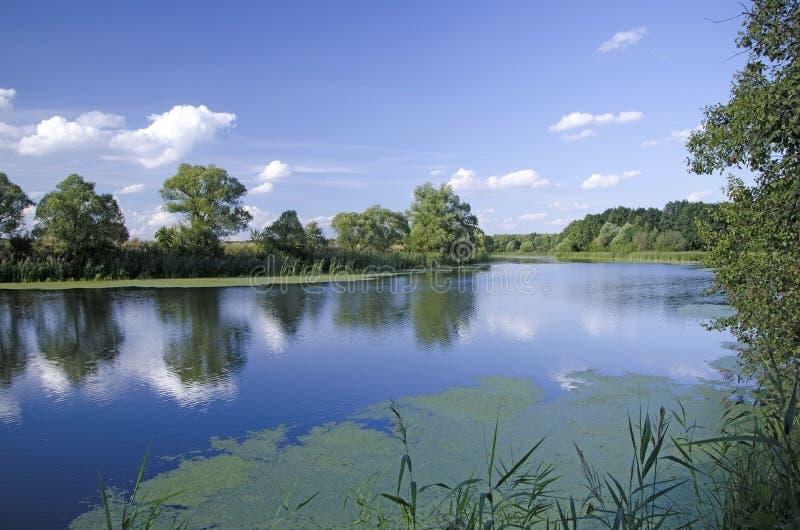 Paisagem com as nuvens que refletem no rio fotografia de stock