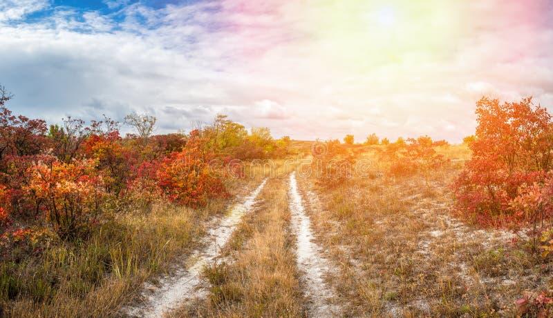 Paisagem com estrada rural imagem de stock