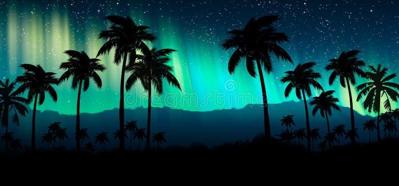Paisagem com estrelas, por do sol da noite, estrelas Palmeiras do coco da silhueta fotografia de stock royalty free