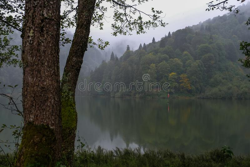Paisagem com lago e a floresta enevoada nas montanhas fotografia de stock