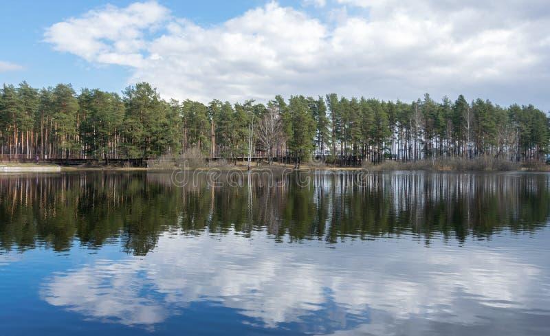 Paisagem com lago e floresta no horizonte Natureza letão na mola adiantada fotografia de stock