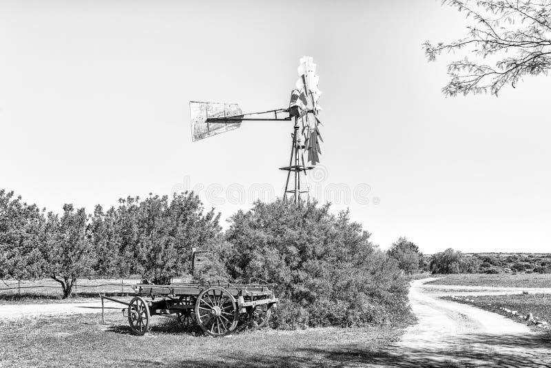 Paisagem com moinho de vento e boi-vagão em Papkuilsfontein monocromático foto de stock