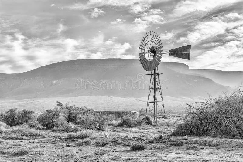 Paisagem, com moinho de vento e represa, no Karoo de Tankwa monocromático fotografia de stock