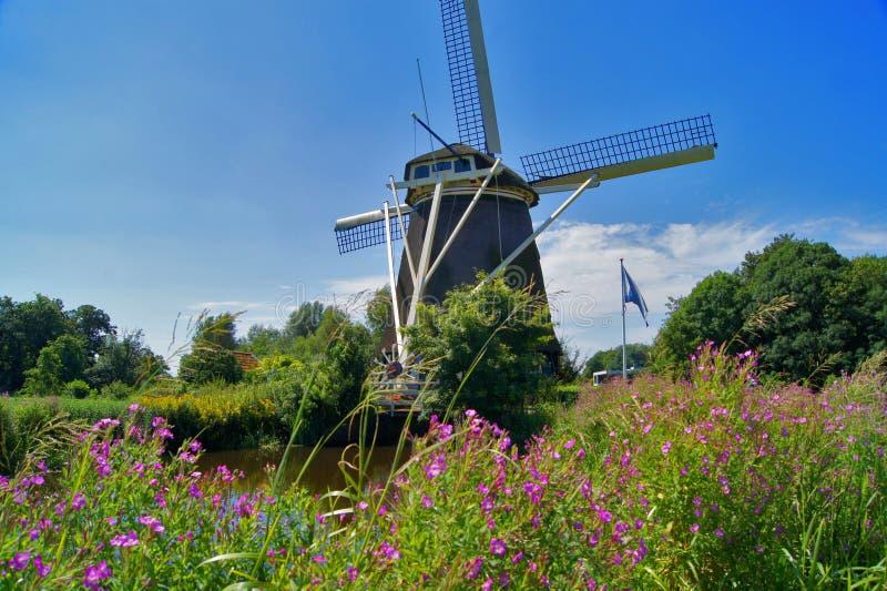 Paisagem com moinho de vento, turbina eólica de Amsterdão foto de stock