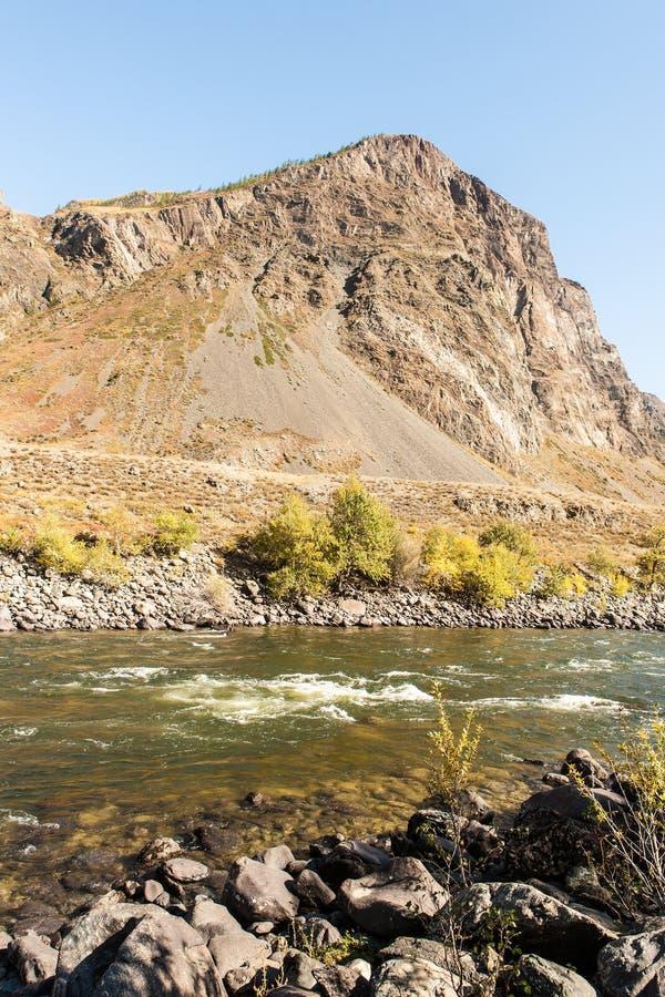 Paisagem com rio da montanha fotos de stock royalty free