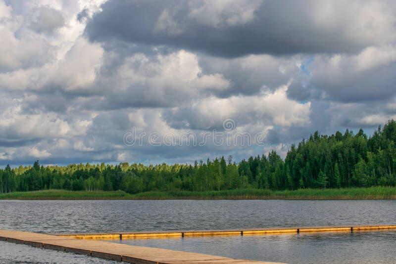 Paisagem com rio e floresta no horizonte Nuvens de Cumulus no c?u Natureza let?o ?rvore no campo fotos de stock royalty free