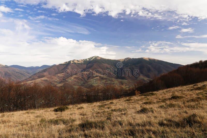 Paisagem com vistas das montanhas Em torno de l 'grama do Est imagens de stock royalty free
