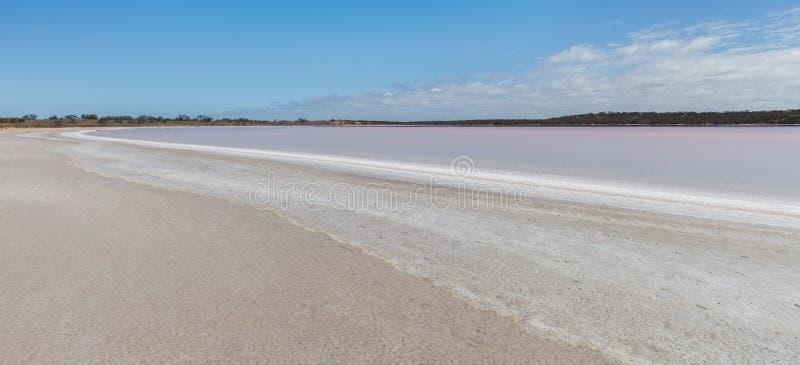 Paisagem cor-de-rosa de Salt Lake Becking fotografia de stock royalty free