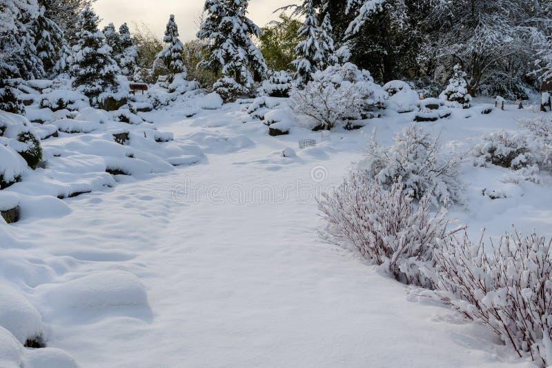 Paisagem crepuscular bonita coberta na neve, trajeto coberto de neve largo através do jardim fotos de stock