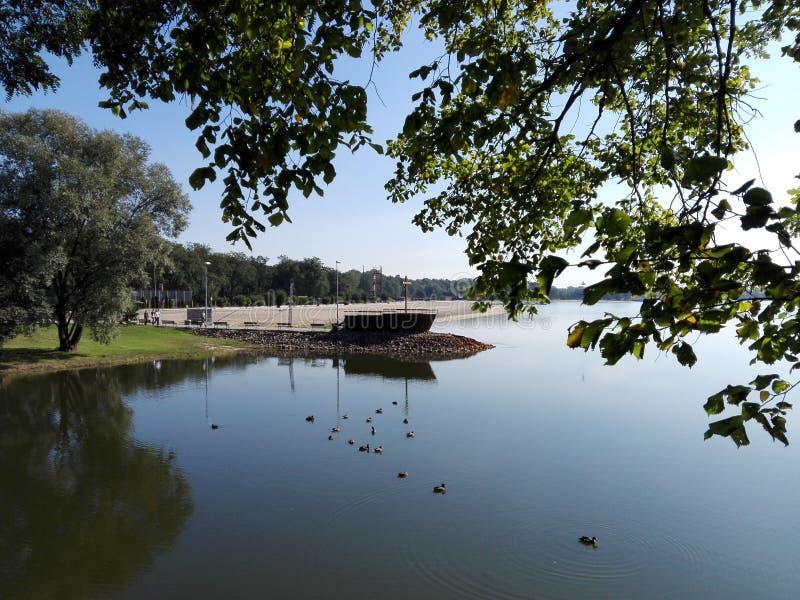 Paisagem da água do lago na manhã imagens de stock