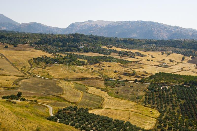 Paisagem da Andaluzia fotos de stock royalty free