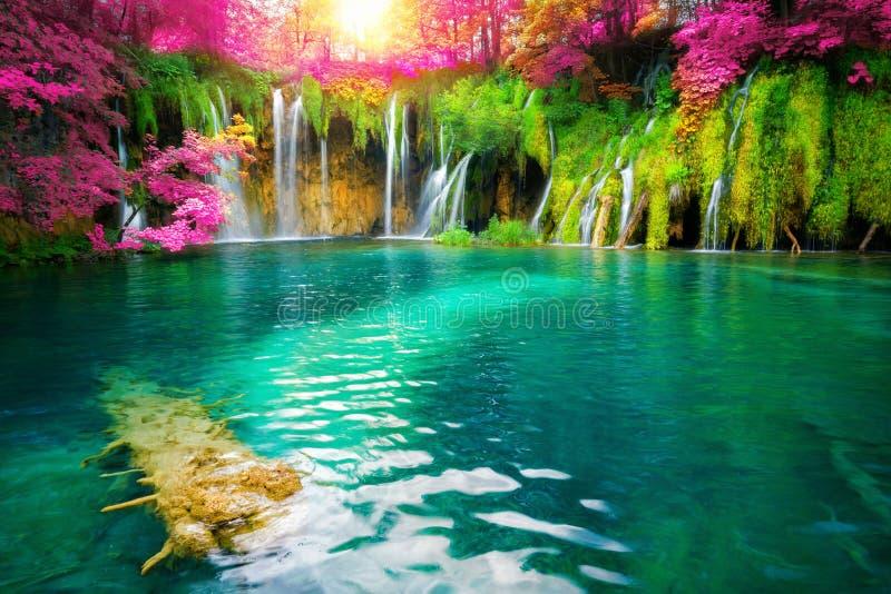 Paisagem da cachoeira da Cro?cia dos lagos Plitvice imagem de stock