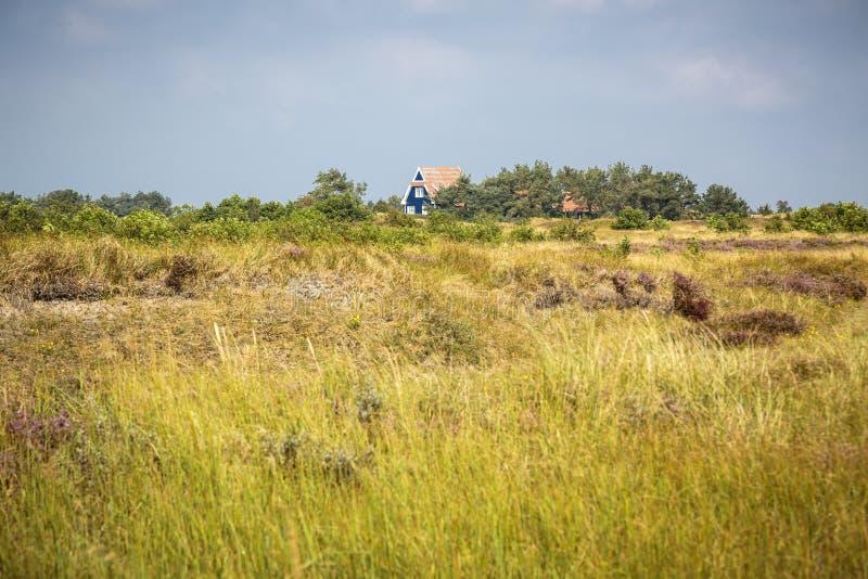 Paisagem da charneca de Hiddensee com casa de campo azul fotos de stock