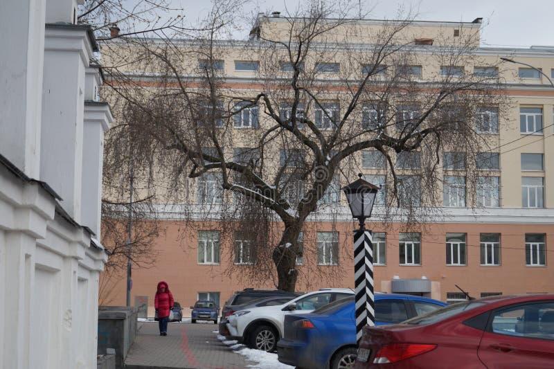 Paisagem da cidade: A árvore pitoresca coberto de neve é ficada situada em um fundo claro cercado por objetos e por construções d fotos de stock royalty free