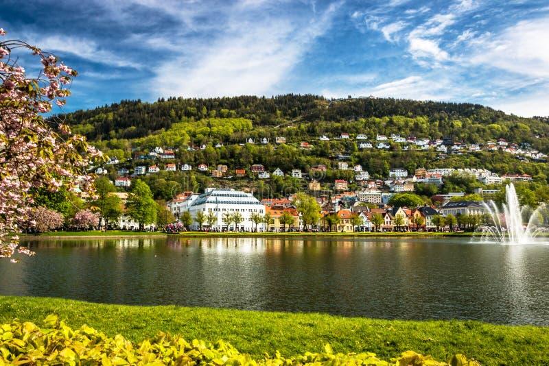 Paisagem da cidade com um lago tranquilo, uma grama verde e uma montanha, Cherry Blossoms na luz solar da mola fotos de stock