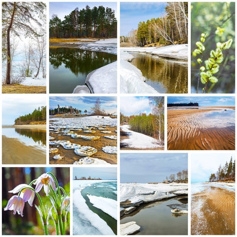 paisagem da Colagem-mola Região de Sibéria ocidental, Novosibirsk, Rússia imagens de stock royalty free