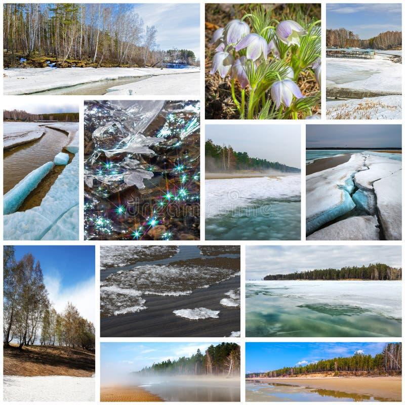 paisagem da Colagem-mola Região de Sibéria ocidental, Novosibirsk, Rússia fotos de stock royalty free