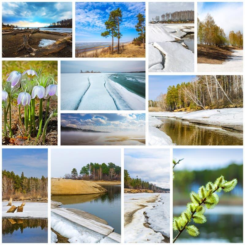 paisagem da Colagem-mola Região de Sibéria ocidental, Novosibirsk, Rússia fotos de stock