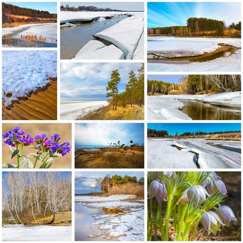 paisagem da Colagem-mola Região de Sibéria ocidental, Novosibirsk, Rússia foto de stock
