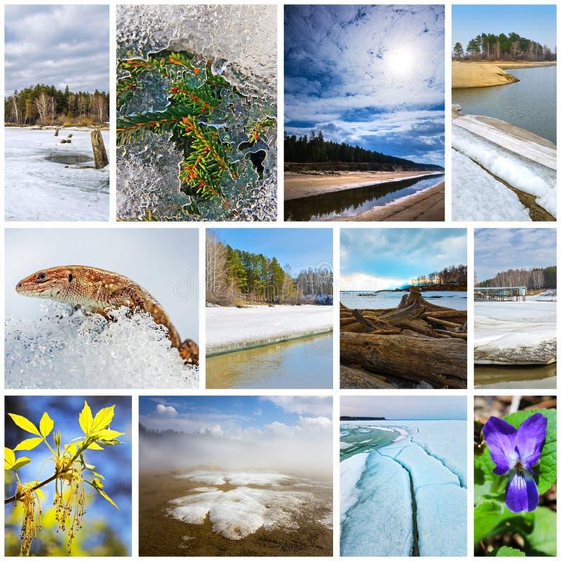 paisagem da Colagem-mola Região de Sibéria ocidental, Novosibirsk, Rússia imagem de stock