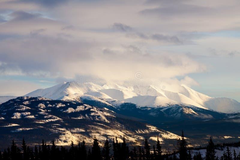Paisagem da cordilheira do inverno de Yukon T Canadá fotos de stock royalty free