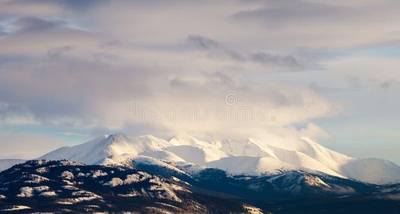 Paisagem da cordilheira do inverno de Yukon T Canadá foto de stock royalty free