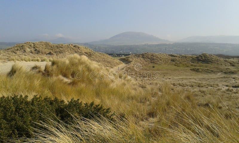 Paisagem da duna de areia de Galês fotos de stock