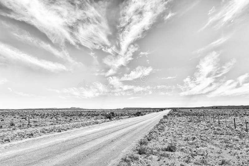 Paisagem da estrada com os wildflowers brancos perto de Williston monocromático foto de stock royalty free