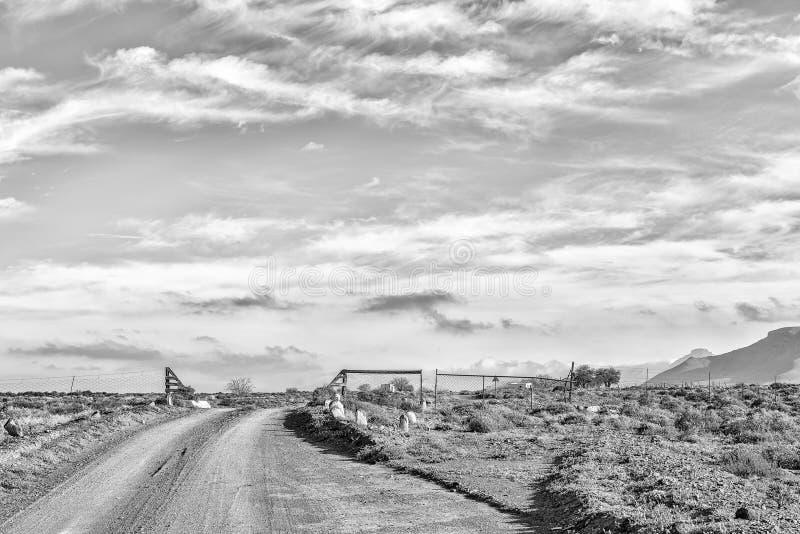 Paisagem da estrada, com porta da grade do gado, no Karoo de Tankwa monocromático foto de stock royalty free