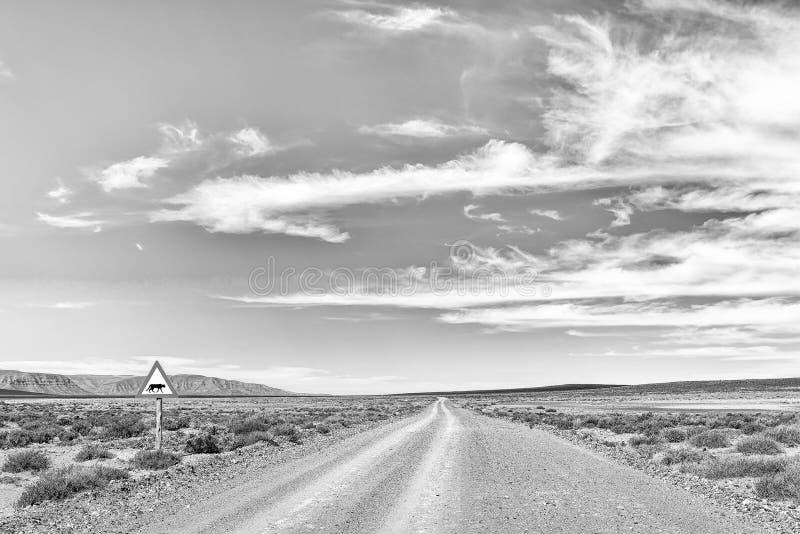 Paisagem da estrada no Karoo de Tankwa monocromático imagem de stock