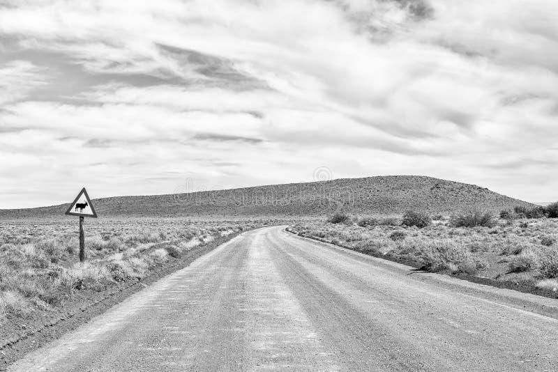 Paisagem da estrada no Karoo de Tankwa monocromático fotografia de stock