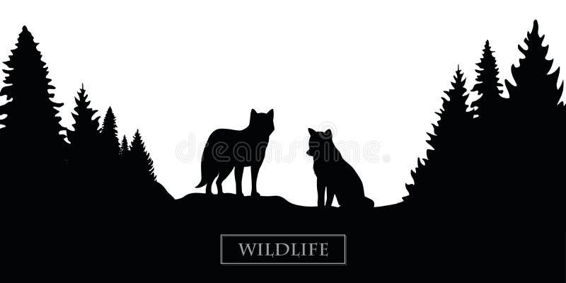 Paisagem da floresta da silhueta do lobo dos animais selvagens preto e branco ilustração stock