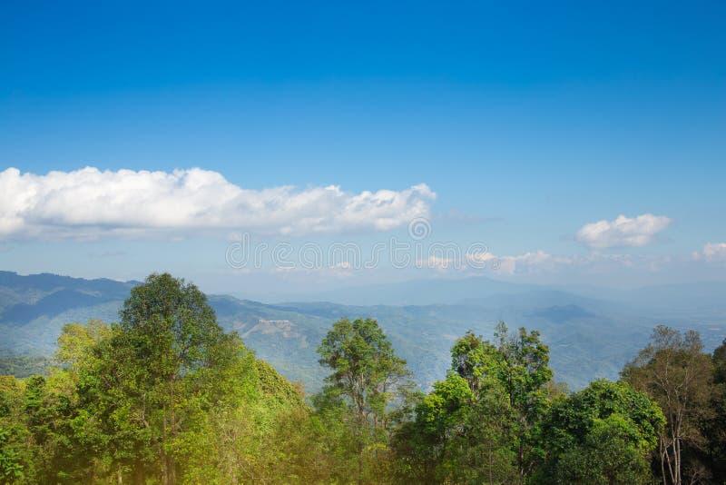 Paisagem da grama verde das montanhas e do céu azul fotografia de stock