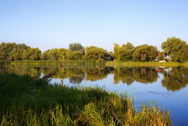 A paisagem da manhã do lago do verão com destaques do céu e de uma superfície bonita e calma da água imagem de stock