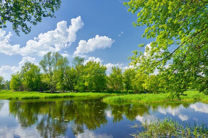 Paisagem da mola com rio e nuvens no céu azul imagem de stock