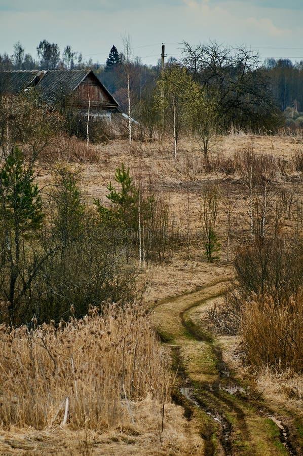 Paisagem da mola no lago na região de Kaluga (Rússia) imagens de stock royalty free