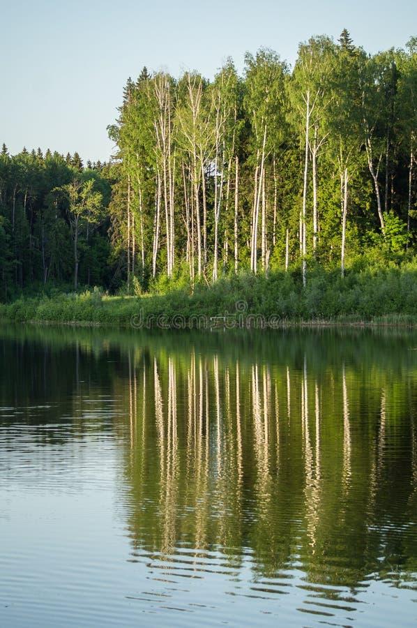 Paisagem da mola no lago na região de Kaluga (Rússia) foto de stock royalty free