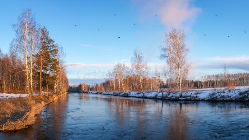 Paisagem da mola no rio no por do sol e em um rebanho dos pássaros, Rússia, Ural foto de stock