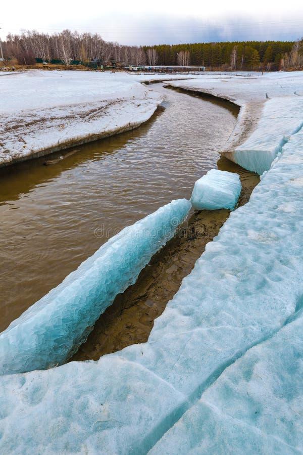 Paisagem da mola no rio Siberian Sibéria ocidental, Rússia fotografia de stock royalty free