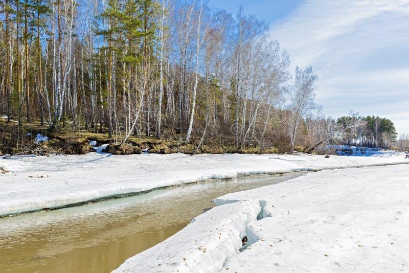 Paisagem da mola Sibéria, Rússia imagens de stock