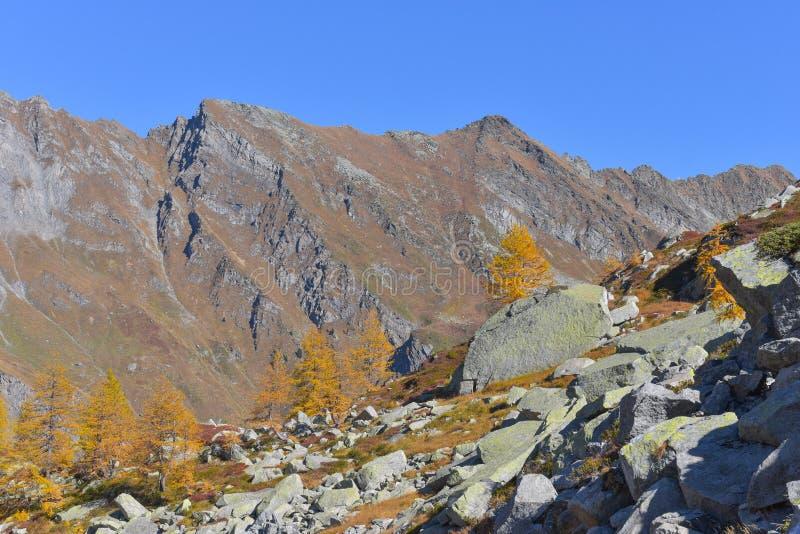 Paisagem da montanha alta, com rochas fotografia de stock royalty free