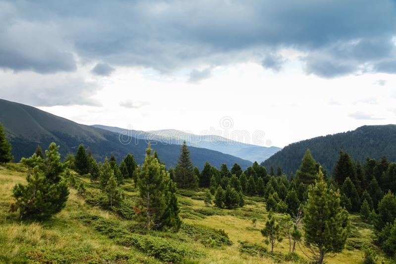 Paisagem da montanha com abeto vermelho e pinheiros nos cumes foto de stock royalty free