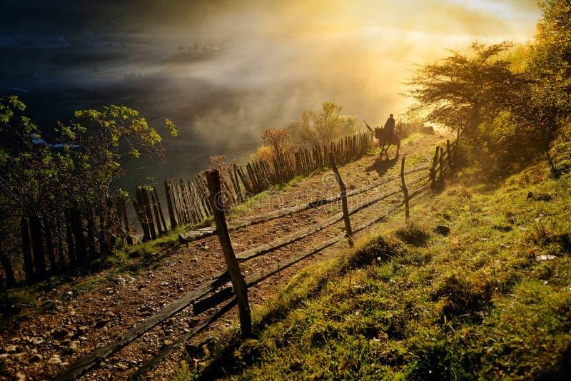 Paisagem da montanha com névoa da manhã do outono no nascer do sol foto de stock