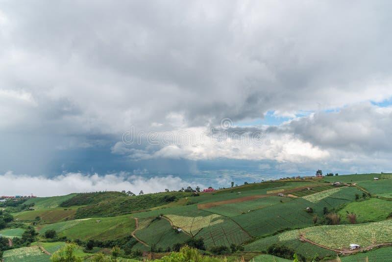 Paisagem da montanha com névoa e cloudscape fotos de stock royalty free