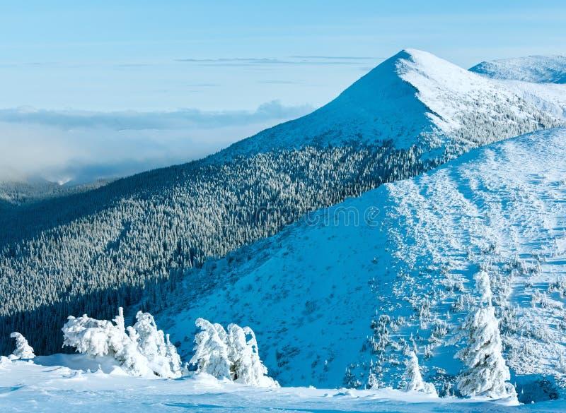 Paisagem da montanha do inverno com árvores nevado foto de stock royalty free