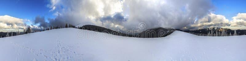 Paisagem da montanha do inverno com pinheiros cobertos de neve e o baixo c imagem de stock royalty free